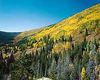 """Piney River Valley""<br />