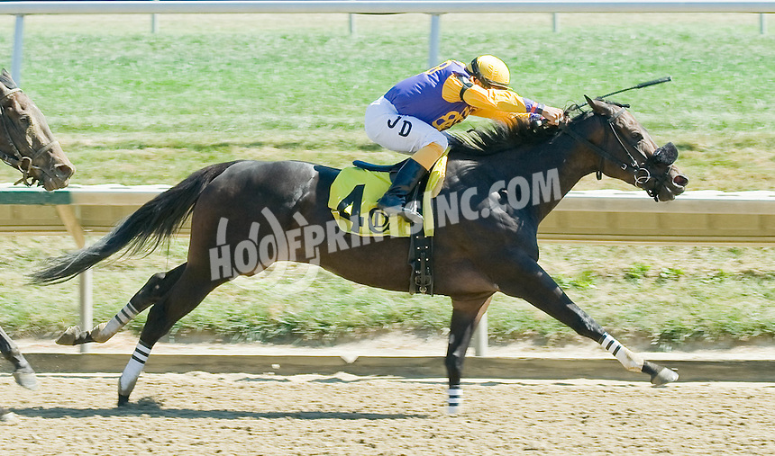 Kincoralyn winning at Delaware Park on 9/15/10
