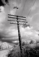 Telephone pole and wires<br />