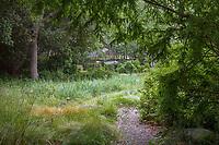 Gravel path leading around California meadow garden room, David Fross