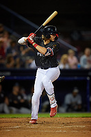 Reading Fightin Phils Alec Bohm (23) at bat during an Eastern League game against the Trenton Thunder on August 16, 2019 at FirstEnergy Stadium in Reading, Pennsylvania.  Trenton defeated Reading 7-5.  (Mike Janes/Four Seam Images)