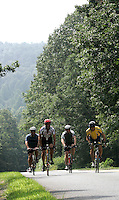 A quad of cyclists make threir way up a steep hill on the Blue Ridge Parkway during the 2nd annual Blue Ridge Extreme bike race. The challenging race route took cyclists through the beautiful Blue Ridge Mountians and a percentage of the proceeds benefitted Charlottesville's Hospice of the Peidmont. /Andrew Shurtleff