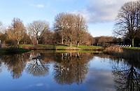 Nederland  Amsterdam   08- 01- 2021.    Nieuw-West. Bomen in Osdorp. Foto : ANP/ HH / Berlinda van Dam