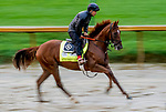 September 2, 2020: Attachment exercises as horses prepare for the 2020 Kentucky Derby and Kentucky Oaks at Churchill Downs in Louisville, Kentucky. The race is being run without fans due to the coronavirus pandemic that has gripped the world and nation for much of the year. Scott Serio/Eclipse Sportswire/CSM