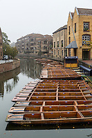 UK, England, Cambridge.  Punts on the River Cam, Early Morning.