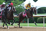 HOT SPRINGS, AR - April 14: Terra Promessa #1 with jockey Jose Ortiz aboard takes the lead in the Apple Blossom Handicap at Oaklawn Park on April 14, 2017 in Hot Springs, AR. (Photo by Ciara Bowen/Eclipse Sportswire/Getty Images)