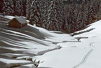 Europe/France/Franche Comté/39 /Jura/Vallée de la Valserine: Détail d'une ferme isolée et forêt de sapins enneigés// France, Jura, Valley of Valserine, detail of an isolated farm and a forest of fir trees covered with snow