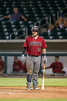 AZL Diamondbacks catcher Jose Herrera (23) smiles before an at bat against the AZL Cubs on August 11, 2017 at Sloan Park in Mesa, Arizona. AZL Cubs defeated the AZL Diamondbacks 7-3. (Zachary Lucy/Four Seam Images)