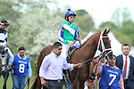 April 11, 2015: Far Right with jockey Mike Smith aboard during post parade of the Arkansas Derby at Oaklawn Park in Hot Springs, AR. Justin Manning/ESW/CSM