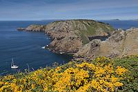 Royaume-Uni, îles Anglo-Normandes, île de Sark (Sercq) :  Gouliot Passage qui sépare Sercq de sa dépendance Brecqhou.  // United Kingdom, Channel Islands, Sark Island (Sercq)   Gouliot Passage .