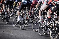 pedaling peloton<br /> <br /> Bredene Koksijde Classic (2019) ( former Handzame Classic )<br /> Bredene > Koksijde 199km (BEL)<br /> <br /> ©kramon