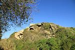 Israel, Sharon region, Poleg Nature reserve