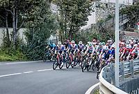 Team Trek-Segafredo bringing Jasper Stuyven (BEL/Trek-Segafredo) to the front with 25km to go<br /> <br /> 112th Milano-Sanremo 2021 (1.UWT)<br /> 1 day race from Milan to Sanremo (299km)<br /> <br /> ©kramon