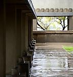 Wright in the Rain