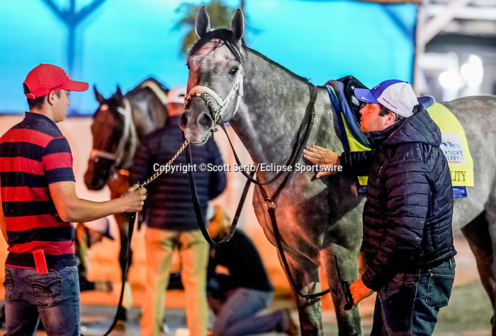 April 24, 2021: Trainer Brad Cox gives a pat to Essential Quality, after his workout for the Kentucky Derby at Churchill Downs in Louisville, Kentucky. (Scott Serio/Eclipse Sportswire/CSM)
