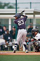 GCL Yankees East third baseman Sandy Mota (23) at bat during the first game of a doubleheader against the GCL Pirates on July 31, 2018 at Pirate City Complex in Bradenton, Florida.  GCL Yankees East defeated GCL Pirates 2-0.  (Mike Janes/Four Seam Images)