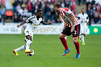 Saturday 19 October 2013 Pictured: Nathan Dyer tries to get the ball past Phil Bardslay of Sunderland<br /> Re: Barclays Premier League Swansea City vSunderland at the Liberty Stadium, Swansea, Wales