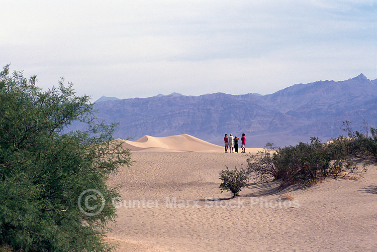 Death Valley National Park, California, CA, USA - Mesquite Flat Sand Dunes and Funeral Mountains near Stovepipe Wells