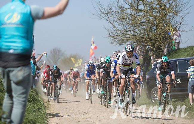 Peter Sagan (SVK/Bora Hansgrohe) leads the peloton on pavé sector 27: Quiévy to Saint-Python<br /> <br /> 115th Paris-Roubaix 2017 (1.UWT)<br /> One day race: Compiègne > Roubaix (257km)
