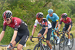 The peloton including Pavel Sivakov (RUS) and Egan Bernal (COL) Team Ineos during Stage 2 of the Route d'Occitanie 2020, running 174.5km from Carcassone to Cap Découverte, France. 2nd August 2020. <br /> Picture: Colin Flockton | Cyclefile<br /> <br /> All photos usage must carry mandatory copyright credit (© Cyclefile | Colin Flockton)