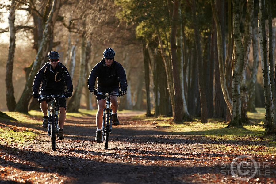 Mark Quartermaine and Mark Bardoe riding Trek and Scott mountain bikes , Wentworth , Surrey  January 2011. Pic copyright Steve Behr / Stockfile