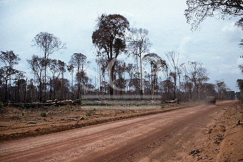 Mato Grosso State, brazil. Newly constructed dirt road cutting through the forest with a truck passing dying and dead trees.