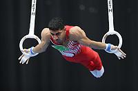12th March 2020, Baku, Azerbaijan;  2020 Artistic World Cup Gymnastics Tournament;  Mahdi Ahmad Kohani, IRI, during qualification on rings