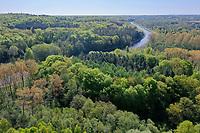 Wald von oben, Luftaufnahme, Laubwald, Mischwald, Elbe-Lübeck-Kanal, Kanal, wood, forest, Deutschland, Norddeutschland, Schleswig-Holstein, Germany
