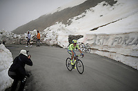 Rafal Majka (POL/Tinkoff) up the snow-covered Colle dell'Agnello (2744m)<br /> <br /> stage 19: Pinerolo(IT) - Risoul(FR) 162km<br /> 99th Giro d'Italia 2016