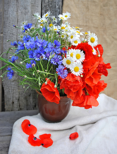 Beautiful bouquet of bright field flowers
