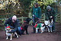"""18/12/16<br /> <br /> British Bulldog, Bubba Klaus with owner Andy Smith, Labrador, Bailey, Spaniel, Hettie, and Collie Aska.<br /> <br /> Close to 800 dogs, many of them dressed up in festive garb, have visited their very own Santa Paws in a special dog-only Christmas grotto held in Sherwood Forest in Nottinghamshire this weekend.<br /> The two-day event, which was organised by park rangers working for Nottinghamshire County Council, has been running for three years.<br /> Ranger Graeme Turner, who originally came up with the idea for a doggy-themed Santa's Grotto said this year has been the best so far.<br /> """"The queue is huge, it snakes back all the way round the visitor's centre,"""" he said. """"All the dogs are being very well behaved, I guess they don't want to get onto Santa Paw's naughty list this close to Christmas!""""<br /> All canine visitors to the grotto got a special doggy bag full of treats and money raised from the event will go to Jerry Green Dog Rescue charity.<br /> <br /> All Rights Reserved F Stop Press Ltd. (0)1773 550665   www.fstoppress.com"""
