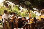 Mariachi's entertaining restaurant customers, Acapulco, Mexico