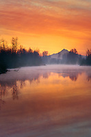 Sunrise over Mt Hood with fog rising in Columbia Slough in Multnomah County Oregon