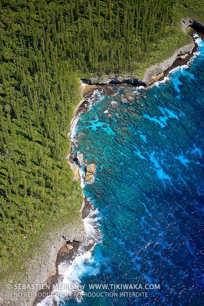 Côte bordée de pins colonnaires, presqu'île d'Oro, Ile des Pins
