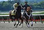 09 June 27: Malibu Prayer prior to the 53rd running of the grade 1 Mother Goose Stakes for three year old fillies at Belmont Park in Elmont, New York.