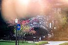 April 28, 2020; Grotto (Photo by Matt Cashore/University of Notre Dame)