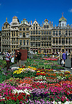 Belgium, Province Brabant, Brussels: Flower market in the Grand Place with the Guild Halls   Belgien, Provinz Brabant, Bruessel: Blumenmarkt auf dem Grand Place (Grote Markt) mit den Zunfthaeusern