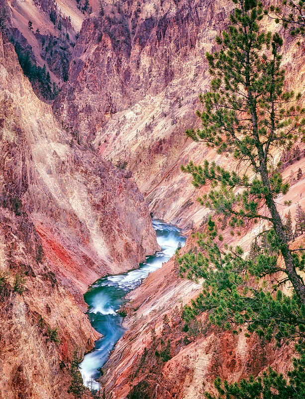 Gorge of the Yellowstone River. Yellowstone National Park, Wyoming