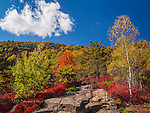 Autumn on Mount Desert Island