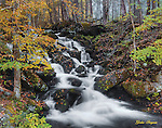 Fall scene of a roadside cascade in the Great Smoky Mountains National Park.