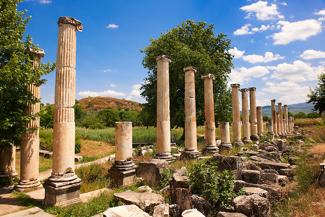 Pillars of the Roman South Agora, Aphrodisias Archaeological site, Turkey