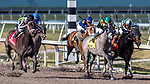 HALLANDALE BEACH, FL - MAR 17:Ivy Bell #1 trained by Todd A. Pletcher with Javier Castellano in the irons closes the gap on the way to winning the $200,000 Inside Information Stakes (G2) at Gulfstream Park on March 17, 2018 in Hallandale Beach, Florida. (Photo by Bob Aaron/Eclipse Sportswire/Getty Images)