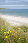 Bay of Lopness Beach, Sanday, Orkney Islands, Scotland