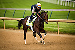 LOUISVILLE, KY - MAY 04: Shagaf gallops in preparation for the Kentucky Derby at Churchill Downs on May 04, 2016 in Louisville, Kentucky.(Photo by Alex Evers/Eclipse Sportswire/Getty Images)