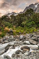 Wild Tekano Creek near Douglas Rock Hut in Copland Valley at pastel sunrise, Westland Tai Poutini National Park, West Coast, South Westland, UNESCO World Heritage Area, New Zealand, NZ