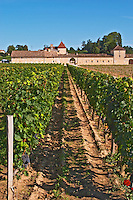 The vineyard and chateau - Chateau Grand Mayne, Saint Emilion, Bordeaux