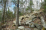 Lowe's Path in the spring months. Located in the Northern Presidential Range of  the White Mountain National Forest of New Hampshire USA.