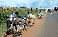 Kenya. Rift Valley Province. Matisi. Bags of maize seeds for sale are carried on bicyle to the next market outside of the city. The men walk near their heavy bikes on the concrete road. © 2004 Didier Ruef