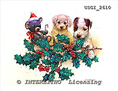 GIORDANO, CHRISTMAS ANIMALS, WEIHNACHTEN TIERE, NAVIDAD ANIMALES, paintings+++++,USGI2610,#XA# dogs,puppies