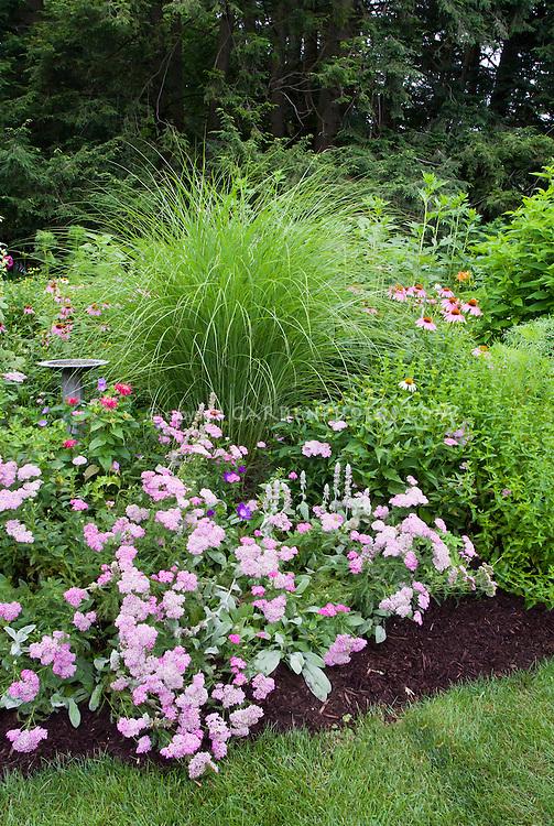 Island bed with Miscanthus ornamental grass, birdbath, Spiraea in pink flowers, mulched next to grass lawn